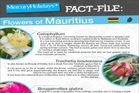 Flowers of Mauritius - a fact file