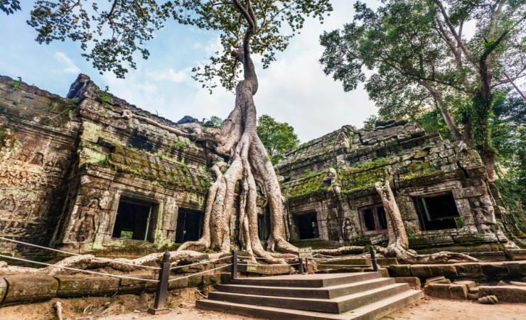 """Ta Prohm Temple Angkor"""