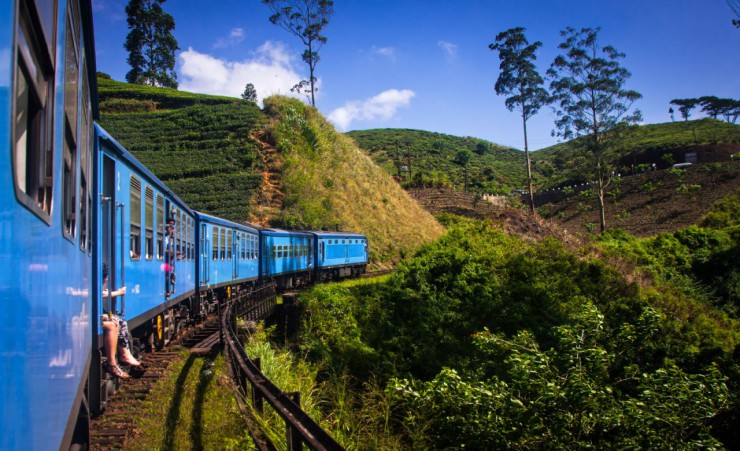 """Nuwara Eliya Tea Plantations"""