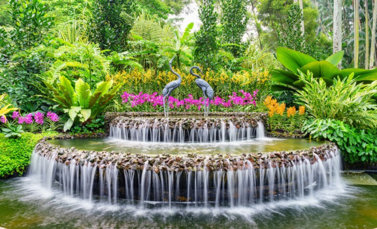 """National Orchid Garden Singapore"""
