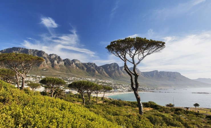 """Beach In Camps Bay"""