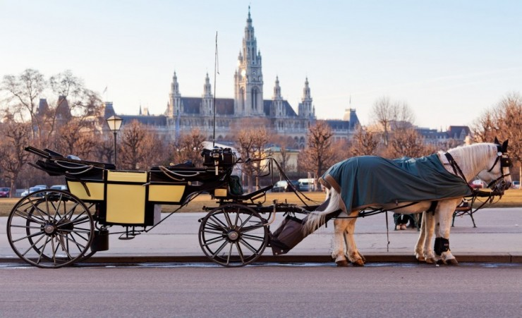 """Fiaker Carriage In Vienna Austria"""